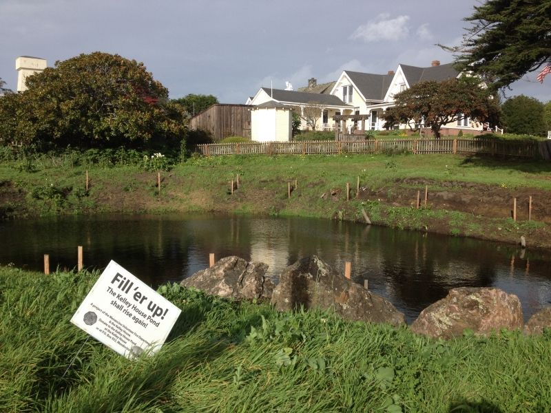 Kelley House Pond Restoration